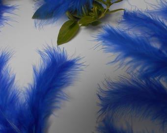 10 feathers - blue d ' about 11cm