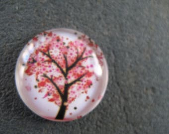 cabochon 20mm tree of life theme
