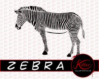 Zebra Vector | ANIMAL Clip Art | Cut File| Instant Digital Download | Svg | Png | Pdf | Jpg | Eps | Dxf |