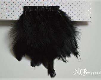 Feathers of black Turkey on a 20 cm Ribbon