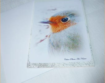 """Little Robin in winter"" greeting card"