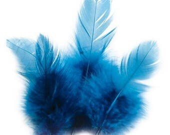 Beautiful set of sweet Rooster feather from 5 to 10 cm - sold per 3 grams is approximately 70 feathers.