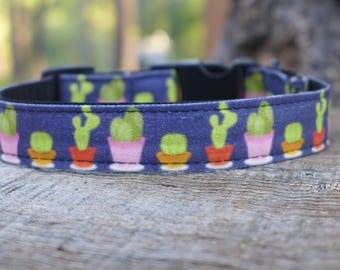 Cactus Cuties! Dog collar, custom