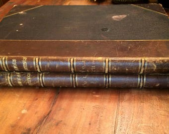 FAMOUS PAINTINGS - Fred H. Allen, 2 Volumes, 1887 First Edition, Great Condition