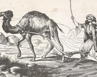 Lebanon 1840, A Plow of Lebanon, Old Antique Vintage Engraving Art Print, Man, Animal, Camel, Chasing, Stick, Harness, Farmer, Field