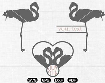 Flamingo SVG Files, Flamingo Monogram Frame svg, Flamingo Lover Clipart, cricut, cameo, silhouette cut files commercial &  personal use