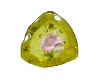 Tourmaline 100% Natural Bi-color Tourmaline Slice 2.60 cts. 10x10.5 mm Beautiful Loose Gemstone - 3827