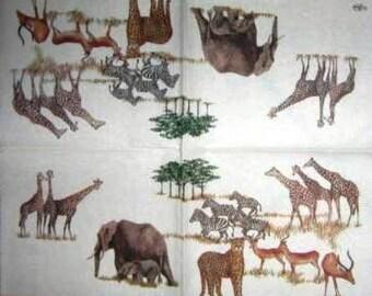 PAPER TOWEL #AN095 savanna animals