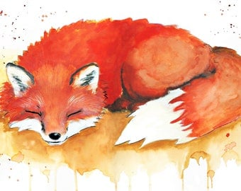 Sleeping Fox - Print - Poster watercolour