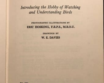 David Gunston's - Birds and You Hardcover Book from 1953