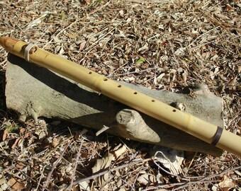 Flute style Native American mid/E (432 Hz)