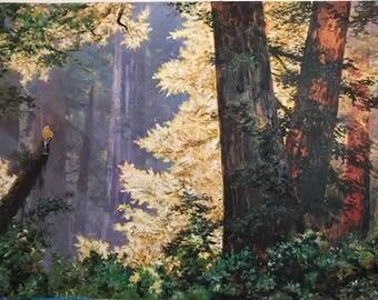 Original Oil Painting - Landscape