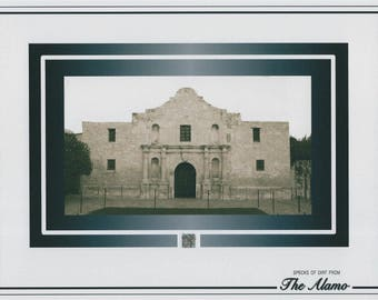THE ALAMO dirt/soil