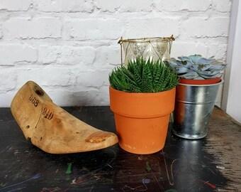Wooden Cobblers shoe