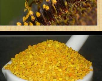 Bee Pollen 8oz