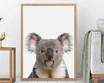 Koala Print, Australian Baby Animal, Nursery Wall Art, Printable Poster, Peekaboo Animals, Koala Bear, Digital Download, Nursery Wall Decor