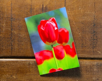Tulips Eco Pocket Notebook, Recycled, Eco-friendly printing