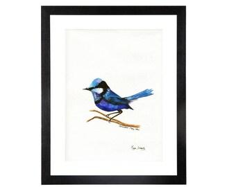 Bird, Splendid Fairy Wren, original Watercolour, contempory, wall art, fine art, nature, Australian made,