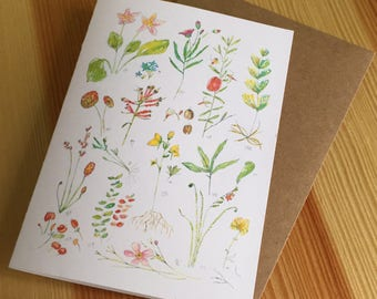 Floral Watercolor Blank Note Cards - Wildflower Boxed Note Cards - Sketchbook Page Watercolor Flower Note Cards - Box of 6