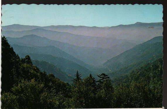 Newfound Gap – Great Smoky Mountains National Park – North Carolina – Vintage Souvenir Postcard