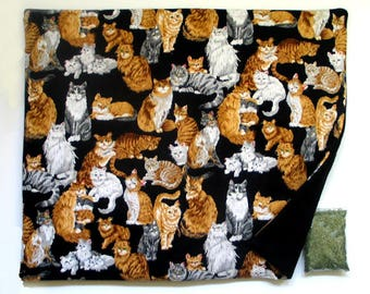 X Large Catnip Mat plus Catnip Cats and Kittens  Refillable Reversible