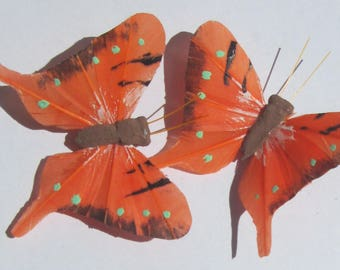 Butterfly Hair Clips Orange feather butterfly Orange Butterflies Hair Ornament hand made hair clips by Ziporgiabella