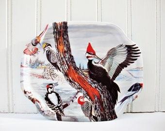 english tin tray pileated woodpecker woodland birds miniature trays