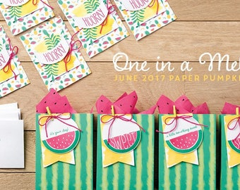 June 2017 One in a Melon Paper Pumpkin kit by Stampin' Up! Fruity card kit watermelon stamp