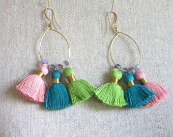 Multicolor Tassel Hoop Earrings