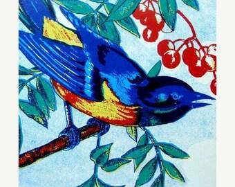 ONSALE 1930s Gorgeous Antique Blue Bird Label Lot of 3