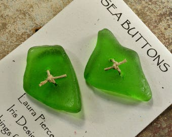 Vibrant green fish    a set of two glowing green  toggle  sea/beach glass  buttons from the coast of Maine