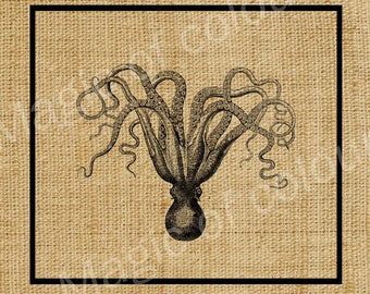 Octopus -  Download Digital Image Sheet Transfer to Fabric - Sea Creatures N2 -  8.5x11 Inch  (A4)   JPG images