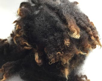 Dark Chocolate Brown Washed/Separated Wool Locks for Primitive Doll Hair-1 full ounce---Coarse and Kinky