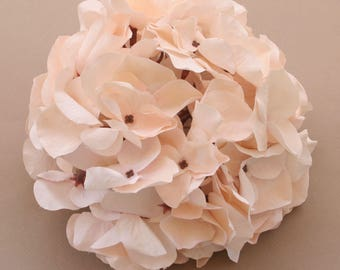 Peach Blush Hydrangea Bunch - Full Head