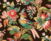 antique french chinoiserie tropical bird tropical flowers wallpaper black background illustration