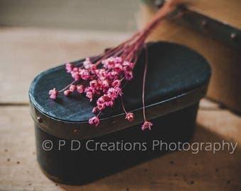 Pink Flowers on Black Box