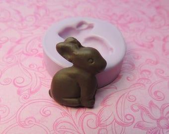 Easter Bunny Mold Tiny Chocolate Easter Rabbit Bunny Mold TINY Miniature Clay Resin DIY Charms Mould