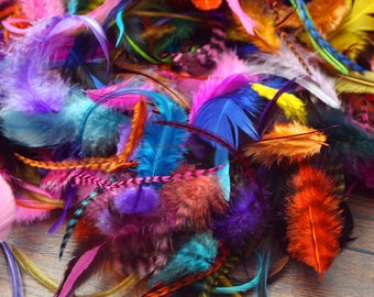 Colorful Craft Feathers Wholesale Bulk Rooster Chicken Feathers Mixed Lot Bird Feathers in Bulk Colourful Feathers Jewelry Making QTY50