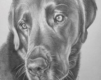 """Custom Pet Portrait 11""""x14"""" Pencil dog cat ferret pets"""