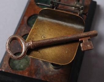Antique metal skeleton key. Old patina