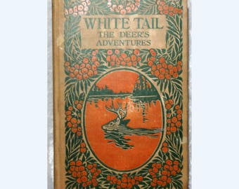 White Tail Deer's Adventures by George Ethelbert Walsh, Antique 1922 Children's Book, Twilight Animal Series, FREE SHIPPING