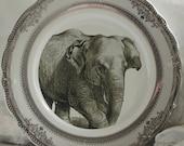 Silver or Gold Elephant Plate, Elephant Dish, Elephant Tableware, Safari Plate, Wildlife Plate, Elephant China, Wildlife Plate, Africa Plate