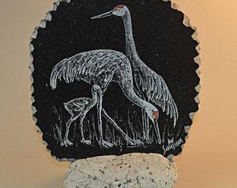Sandhill cranes on black granite tile