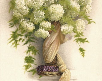 White Hyndrangeas Flowers Bouquet Antique French Postcard Chromolithograph Post Card