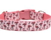 "Flamingo Dog Collar 3/4"" or 1"" Summer Dog Collar"