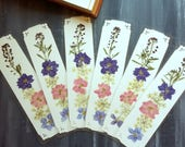 PRESSED FLOWER BOOKMARK -  Real Maine Larkspur and Queen Anne's Lace Preserved Botanicals, Choose One or More Bookmarks