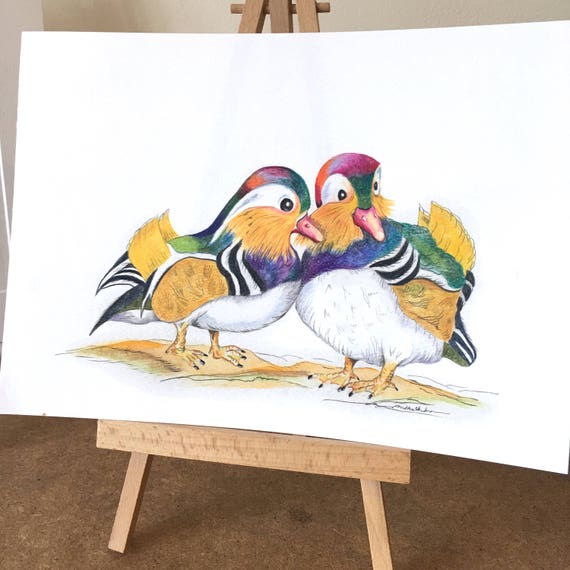 ORIGINAL DRAWING of Twin Brother, Brothers or Gay Mandarin Ducks. Symbolizing Feng Shui Love, Loyality & Friendship. LGBT or Friends.