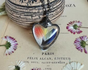 Heart Pendant necklace terrarium, with feathers of parrots: Australian King Parrot, Parakeat. Terrarium Jewelry by BUSTANI, One of a kind