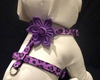 Dog harness flower  set  -  Purple Leopard Print - size XS, S, M