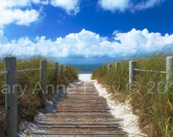 Morning Dunes at Smathers Beach in Key West, Florida